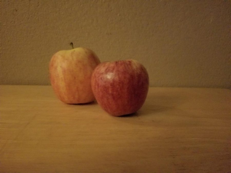 A pair of fresh apples bought from a local grocery store. The fruit on the left is organic; the fruit on the right is a GMO.