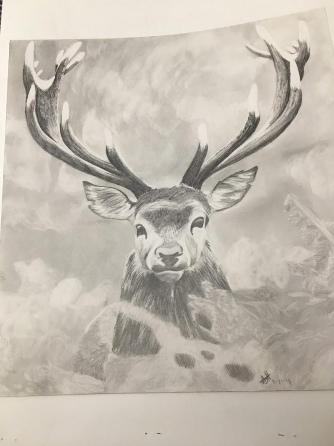 A+pencil+illustration+of+a+deer+drawn+by+VHS+student+Amanda+Heimbuck.