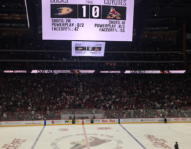 Coyotes Season Starts Off With New Video Screen,  Loss to the Ducks
