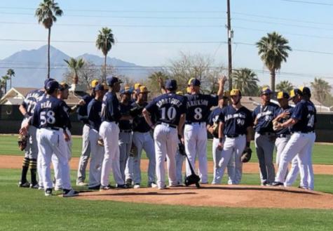 Arizona Notorious Spring Training Season is Right Around the Corner